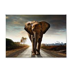 Холст прямоугольный Дикий слон цвета 3D-принт — фото 2