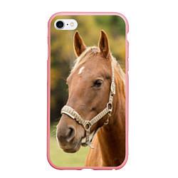 Чехол iPhone 6/6S Plus матовый Взгляд лошади цвета 3D-баблгам — фото 1