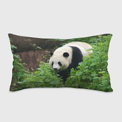 Подушка-антистресс Панда в лесу цвета 3D — фото 1
