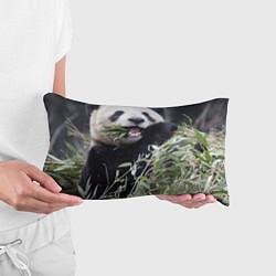 Подушка-антистресс Панда кушает цвета 3D — фото 2