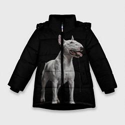 Куртка зимняя для девочки Bully цвета 3D-черный — фото 1