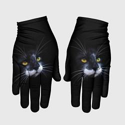 Перчатки Кот цвета 3D — фото 1