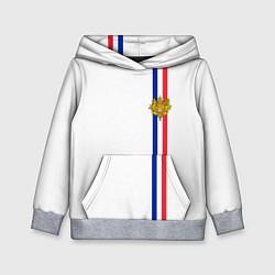 Толстовка-худи детская Франция: лента с гербом цвета 3D-меланж — фото 1