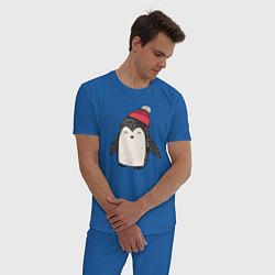 Пижама хлопковая мужская Зимний пингвин-мальчик цвета синий — фото 2