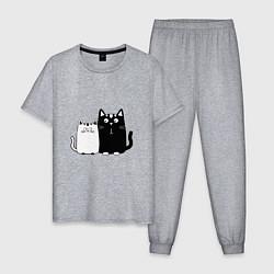 Пижама хлопковая мужская Удивленные коты цвета меланж — фото 1