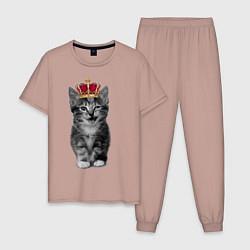 Пижама хлопковая мужская Meow kitten цвета пыльно-розовый — фото 1