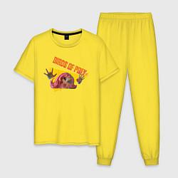 Пижама хлопковая мужская Birds of Prey xx цвета желтый — фото 1