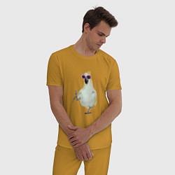 Пижама хлопковая мужская Попугай в очках цвета горчичный — фото 2