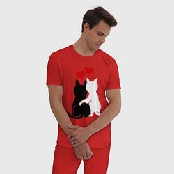 Пижама хлопковая мужская Кошачья любовь цвета красный — фото 2