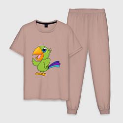 Пижама хлопковая мужская Мексиканский Попугай цвета пыльно-розовый — фото 1