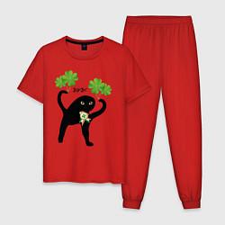 Пижама хлопковая мужская Ирландец ЪУЪ! цвета красный — фото 1