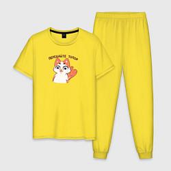 Пижама хлопковая мужская Кошечка цвета желтый — фото 1