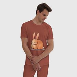 Пижама хлопковая мужская Милый зайчик цвета кирпичный — фото 2