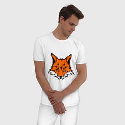 Пижама хлопковая мужская Лисица (Лис) цвета белый — фото 2