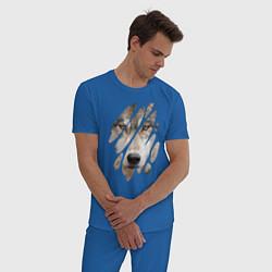 Пижама хлопковая мужская Волк - моё второе Я цвета синий — фото 2