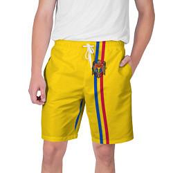 Шорты на шнурке мужские Молдавия: лента с гербом цвета 3D-принт — фото 1