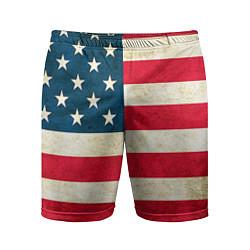 Шорты спортивные мужские США цвета 3D-принт — фото 1