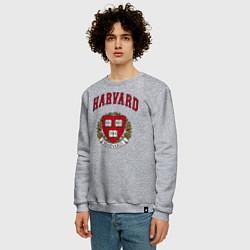 Свитшот хлопковый мужской Harvard university цвета меланж — фото 2