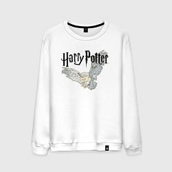 Мужской свитшот Гарри Поттер: Букля