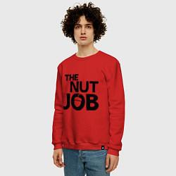Свитшот хлопковый мужской The nut job цвета красный — фото 2