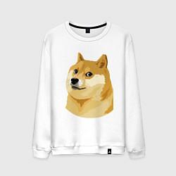Мужской свитшот Doge