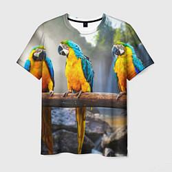 Мужская 3D-футболка с принтом Экзотические попугаи, цвет: 3D, артикул: 10095845903301 — фото 1
