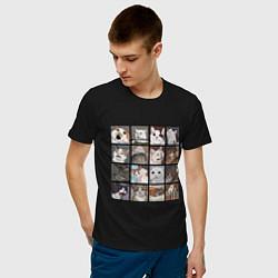 Футболка хлопковая мужская Коты из мемов цвета черный — фото 2