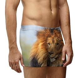 Трусы-боксеры мужские Красавец лев цвета 3D-принт — фото 2