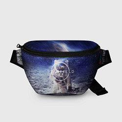 Поясная сумка Starfield: Astronaut цвета 3D — фото 1