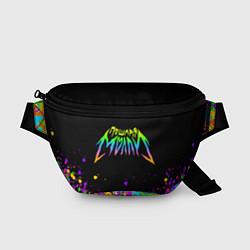 Поясная сумка Пошлая Молли цвета 3D-принт — фото 1