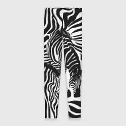 Леггинсы женские Полосатая зебра цвета 3D-принт — фото 1