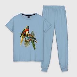Пижама хлопковая женская Тропические попугаи цвета мягкое небо — фото 1